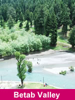 Betab Valley Pahalgam